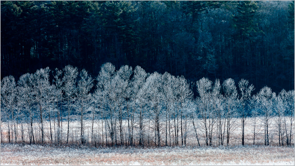 Ulla-Schaefer-Cades-Cove-Winter